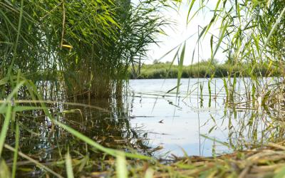 LEADER Aktionsgruppe Flusslandschaft Peenetal